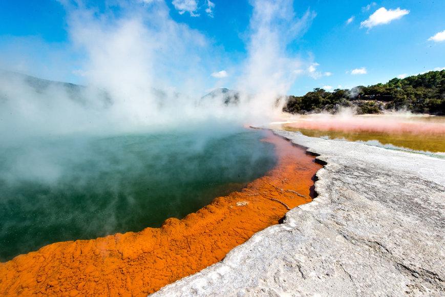 Shutterstock nuotr./Rotorua