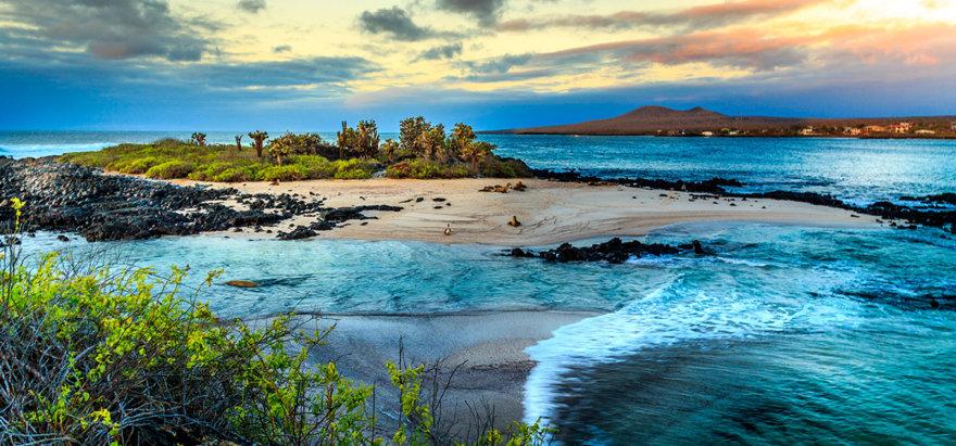 Shutterstock nuotr./Galapagų salos