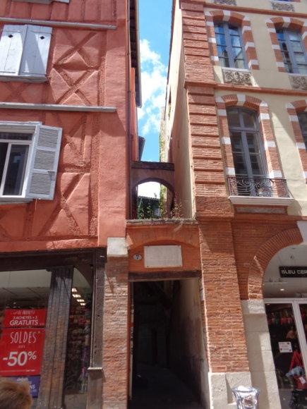 Gabijos Lebednykaitės nuotr./Rausvuoju miestu dėl vyraujančios pastatų spalvos vadinama Tulūza