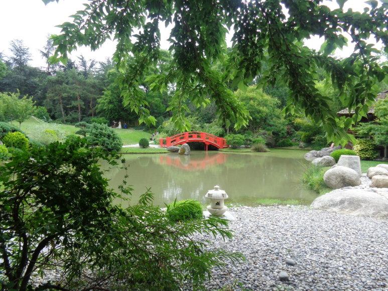Gabijos Lebednykaitės nuotr./Japoniškas sodas, bažnyčios ir Hotel d'Assezat vidinis kiemas
