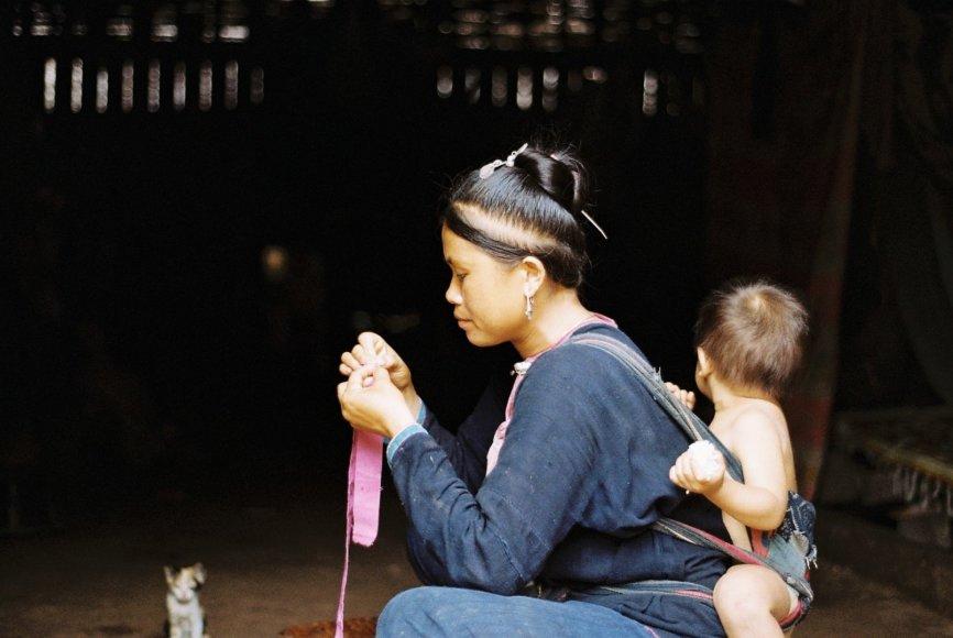 Asmeninės nuotr./Laosas, Indigo miškų mįslės. Nuotrauka padaryta 2013 m.