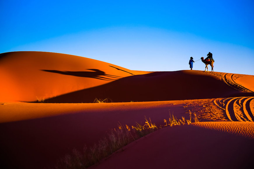 Shutterstock nuotr./Sacharos dykuma