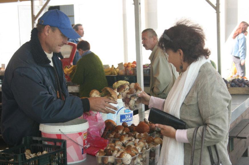 Klaipėdos turgavietėse pastarosiomis dienomis grybų tiek daug, kad prekeiviai buvo priversti nuleisti jų kainas.