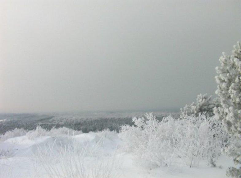 Slidinėjant Neringoje galima pasigrožėti nuostabiais žiemiškos gamtos vaizdais.