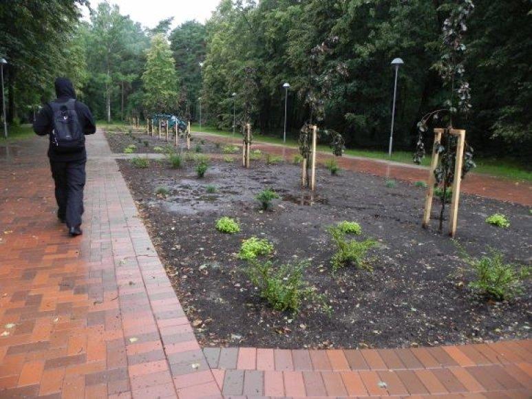 Parke baigtas pirmasis rekonstrukcijos etapas.