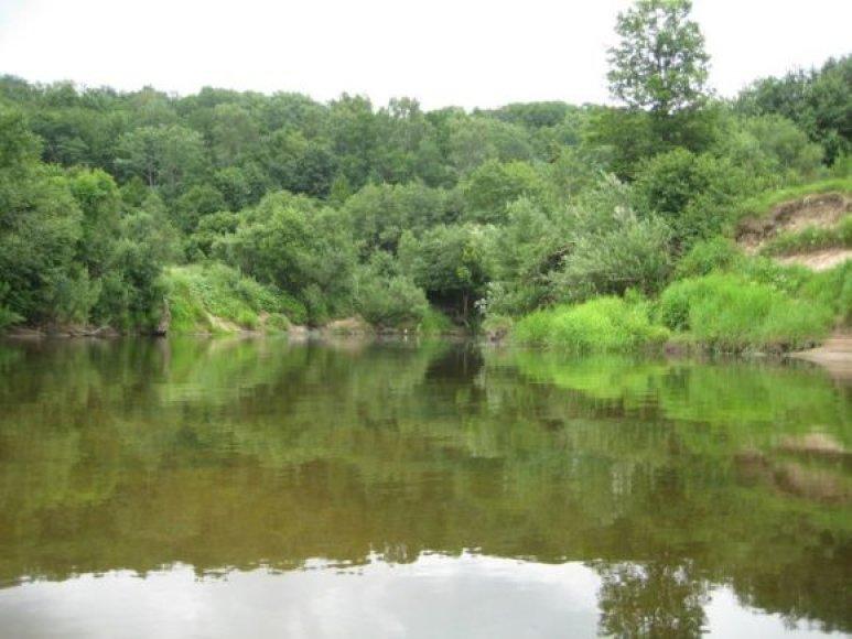 Minijos upėje ties Priekule nepatariama maudytis.