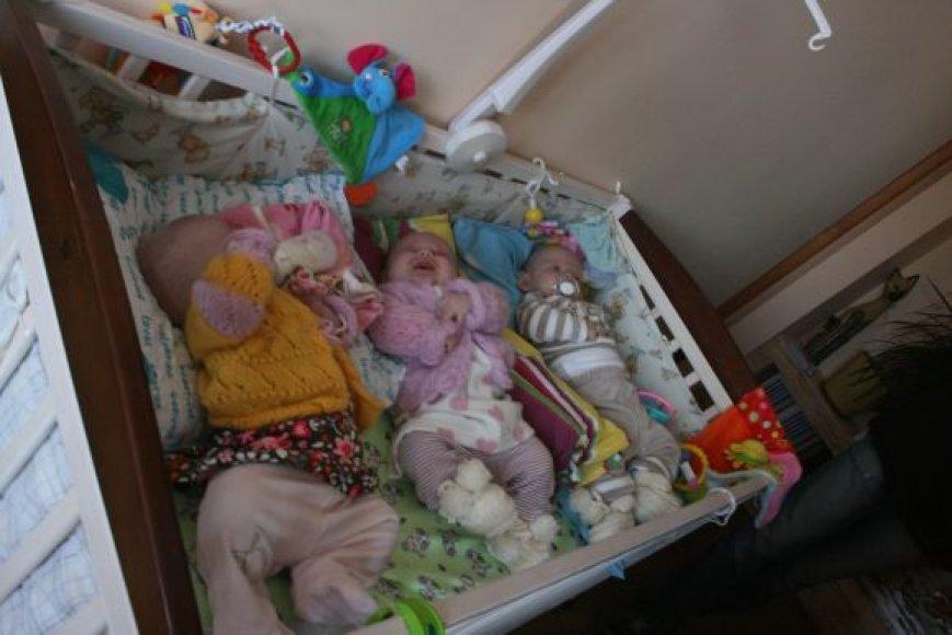Šiais metais klaipėdiečiams gimė keturi trejetukai.
