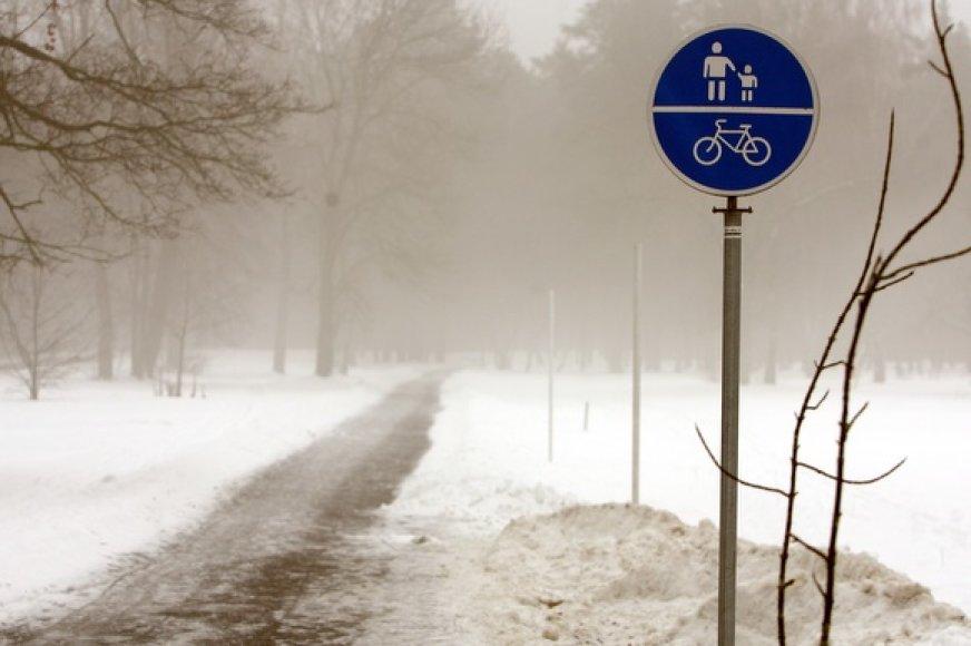 Sostinės Vingio parke aptirpusių sniego senių daugiau nei vaikštančių žmonių