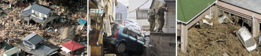 Katastrofos Japonijoje pasekmės