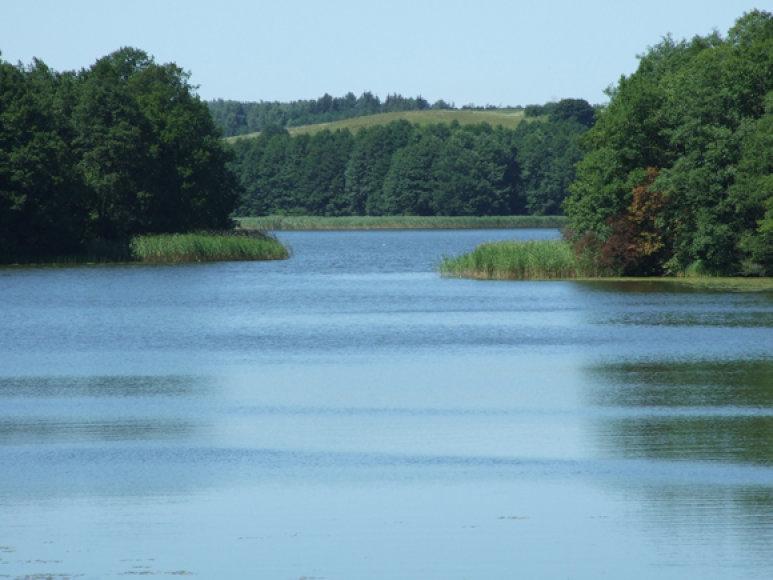 Ne tik Sugarde, bet ir kituose ežeruose karšiai jau orientuojasi į rudeninį valgiaraštį