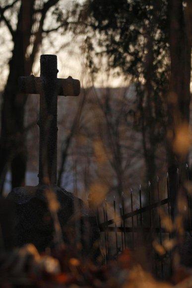 Kapinėse
