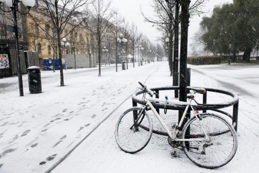Sniegas Švedijoje