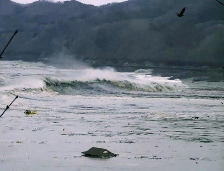 Cunamio banga šalia Otsuši miesto 2011 kovo 11 dieną.