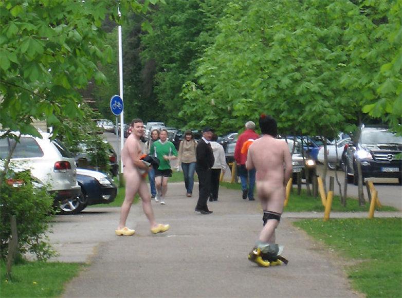 Nuogaliai Vilniaus Vingio parke
