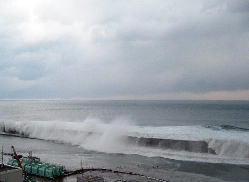 Cunamio bangos atsirita link Fukušimos-1 atominės elektrinės