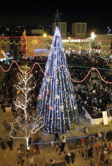 Kalėdų eglė Betliejuje