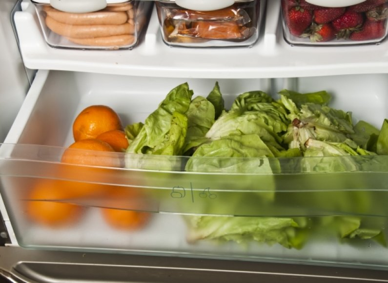 Šaldytuve skirtingų kategorijų produktai turėtų būti laikomi atskirai, nepamirškite rūpintis ir paties buitinio prietaiso švara.
