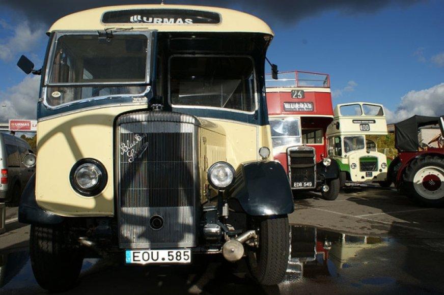 Senovinių angliškų autobusų paroda senturgyje