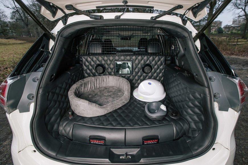 """""""Nissan X-Trail 4dogs"""" koncepcija"""