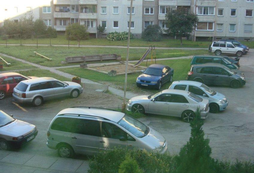 """""""Volkswagen Passat"""" ant žolės"""