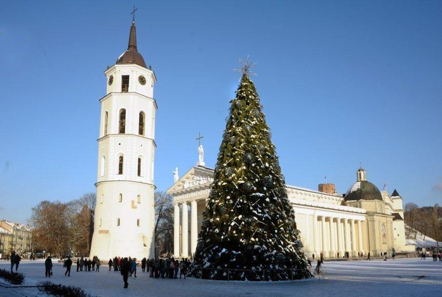 Kalėdų eglė Vilniaus Katedros aikštėje