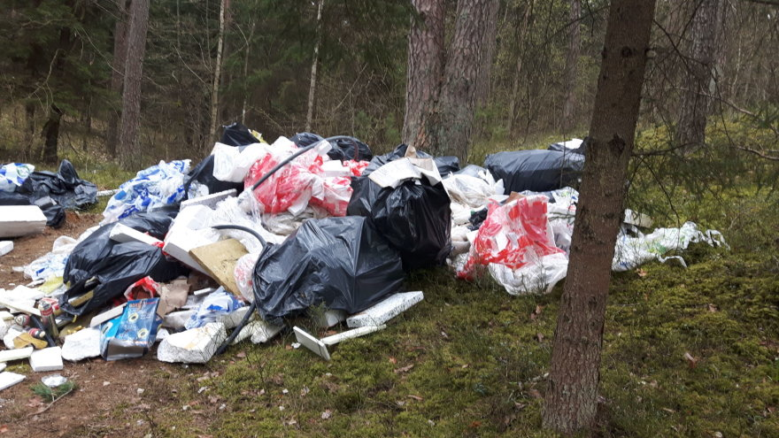 VRAAD Vilniaus miesto agentūros nuotr./Aplinkosaugininkai sučiupo miško teršėjus