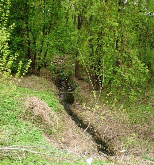 Ašarėnos upelis