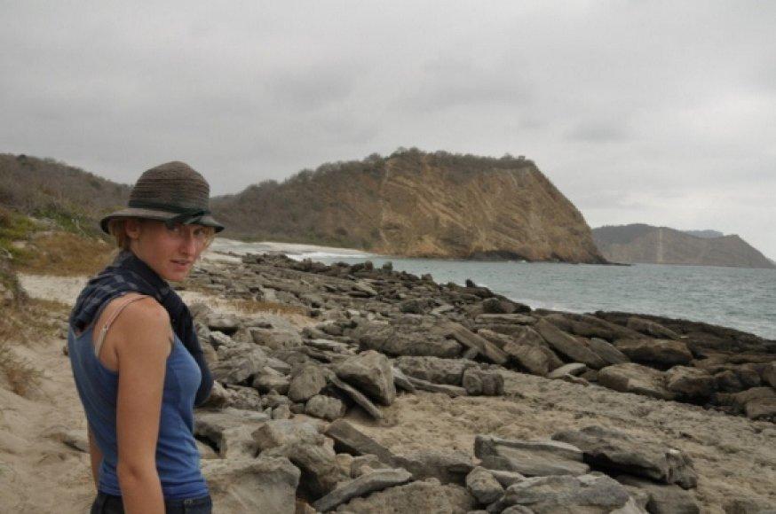 Eglė prie Ramiojo vandenyno