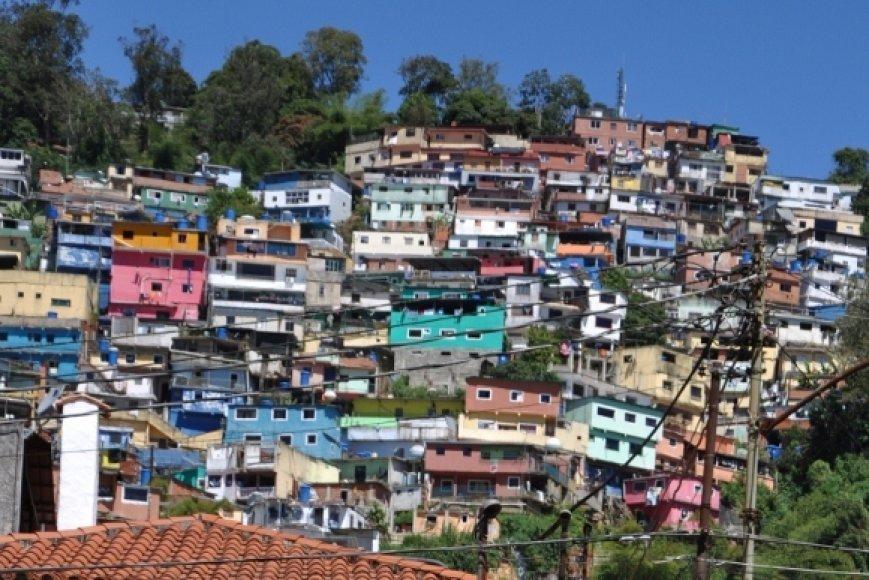 Karakaso lūšnynai primena kregždžių lizdus