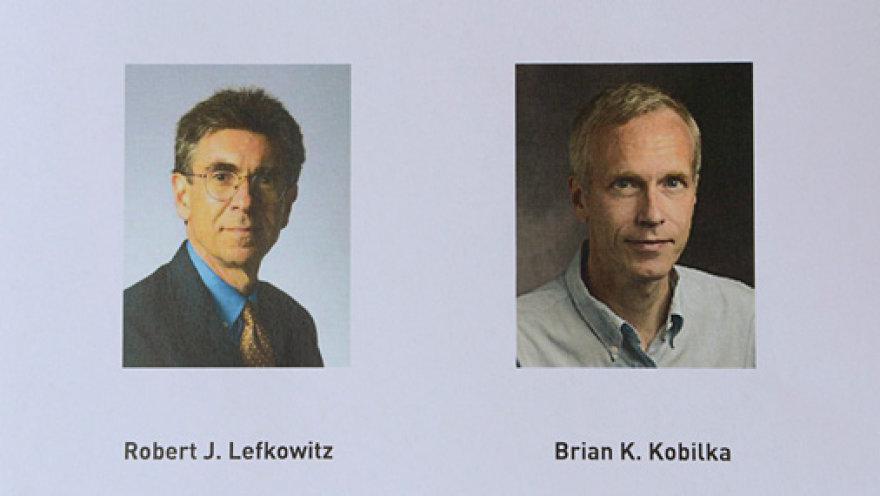 Нобелевская премия 2012 года по химии присуждена Роберту Лефковицу и Брайану Кобилка из США.