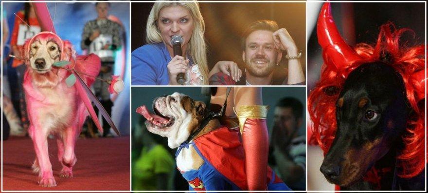 "Konkurso ""Dog-o-weenas"" akimirka"
