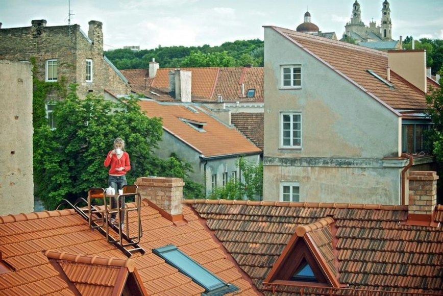 Stalelis kavai ant namo stogo Užupyje