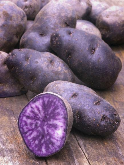 123RF.com nuotr./Mėlynosios bulvės