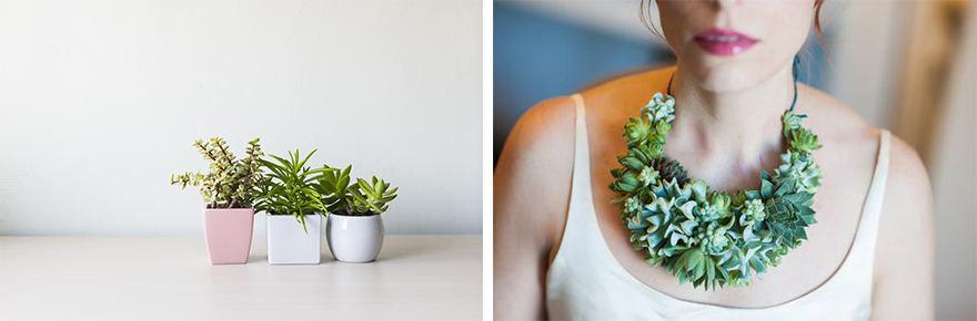 Projekto partnerio nuotr./Žalieji augalai / Susan McLeary