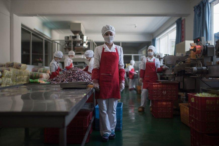 """AFP/""""Scanpix"""" nuotr./Kasdieniški Šiaurės Korėjos gyventojų portretai"""