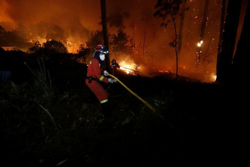 """Reuters""/""Scanpix"" nuotr./Miško gaisras Portugalijoje"