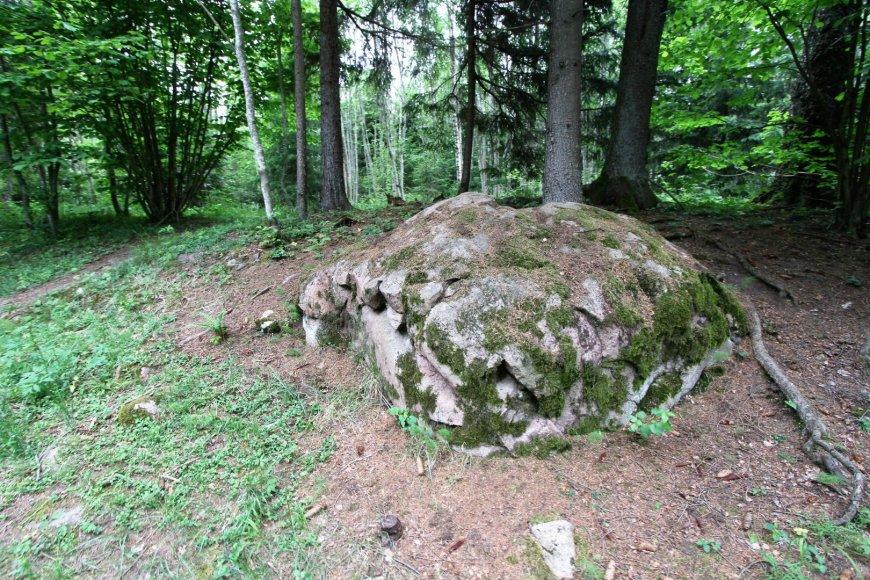 Alvydo Januševičiaus nuotr./Akmenų rūža Tytuvėnų regioniniame parke