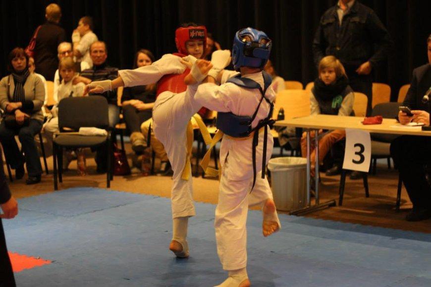 Vilniaus karate lyga 2014-03-01