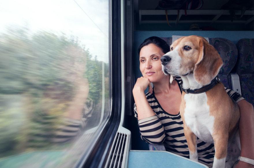 Kelionė traukiniu su šunimi