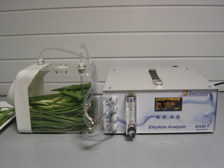 Kvėpavimo intensyvumo tyrimai padėjo parengti rekomendacijas, kaip tinkamiausia saugoti įvairių rūšių derlių.