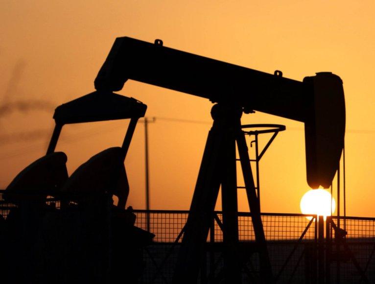 Naftos gavyba