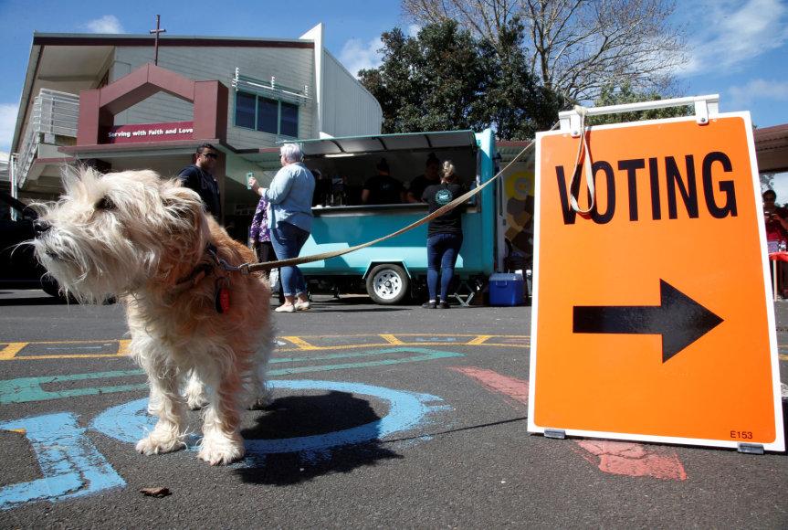 Rinkimai Naujojoje Zelandijoje