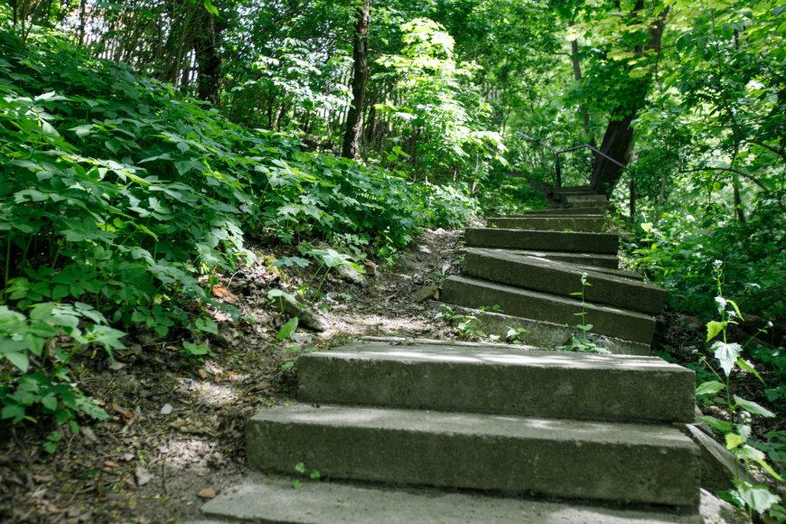 Limos tako laiptai