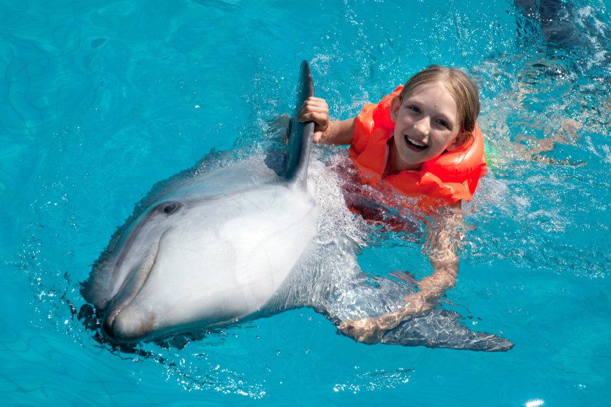 Mergaitė žaidžia su delfinu