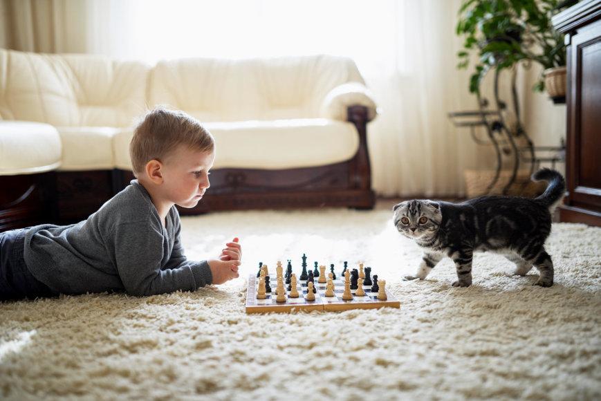 Vida Press nuotr./Berniukas ir katinas