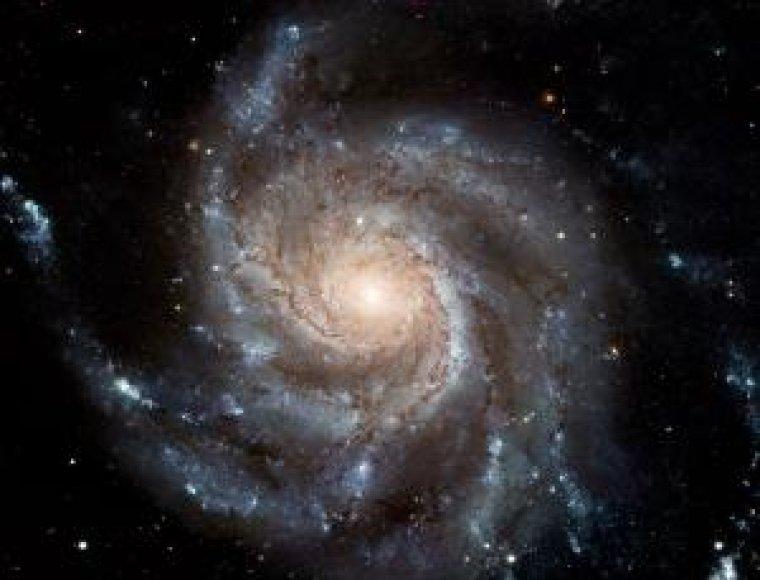 Mesjė 101 galaktika