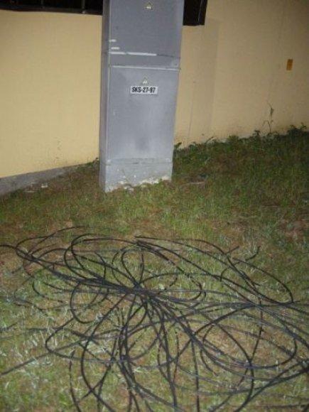 Vagišiai susigundė elektros kabeliais Klaipėdos centriniame stadione.