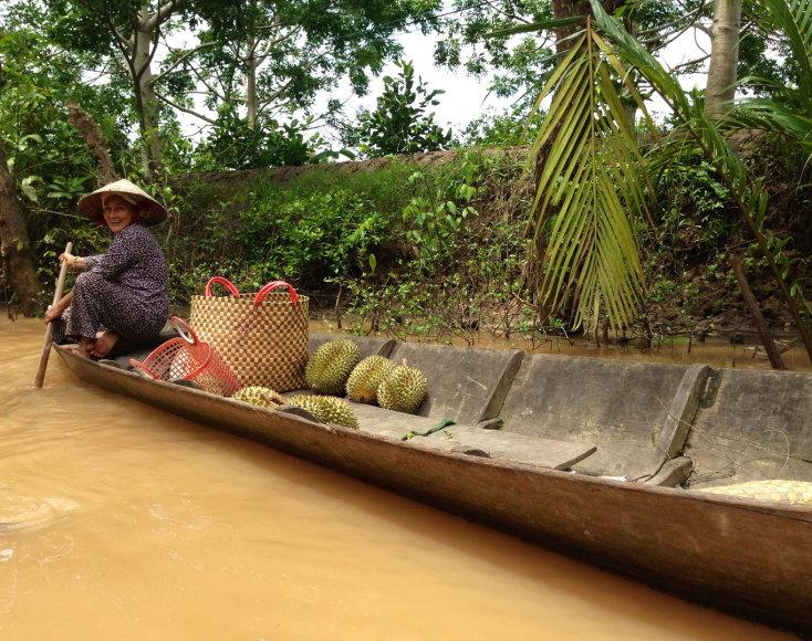 Vietnamas. Mekongo upės delta.