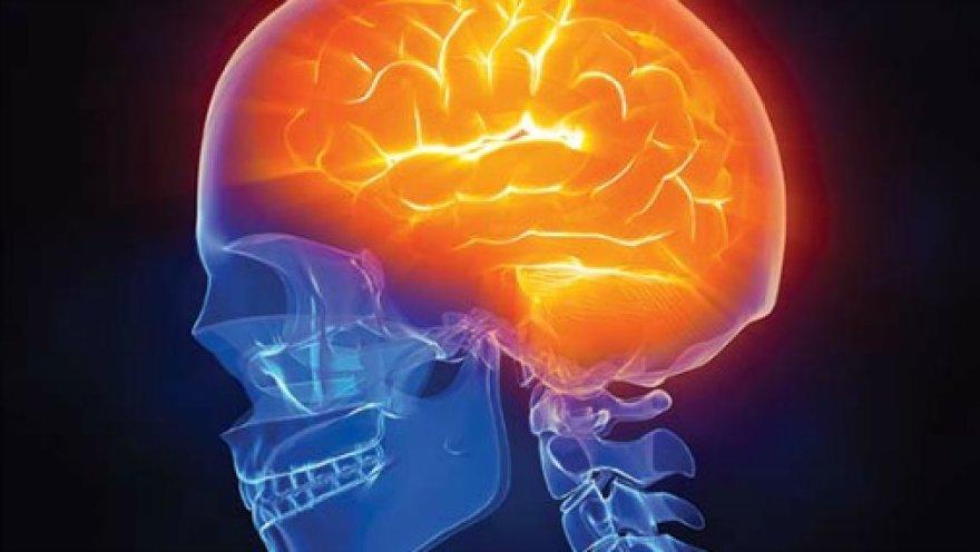 Работу мозга записали на видео