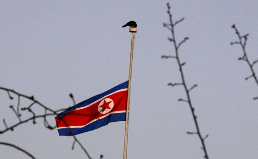 Pusiau nuleista Šiaurės Korėjos vėliava